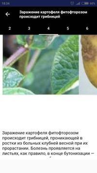 Болезни овощей apk screenshot