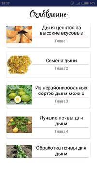 Дыня poster