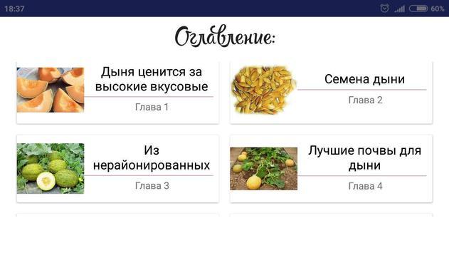 Дыня screenshot 3