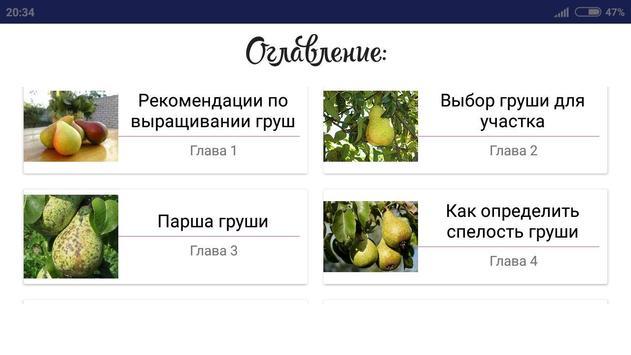Груша screenshot 3