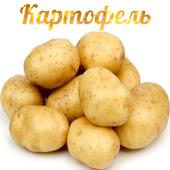 Картофель icon