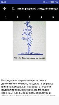 Плодовые деревья poster