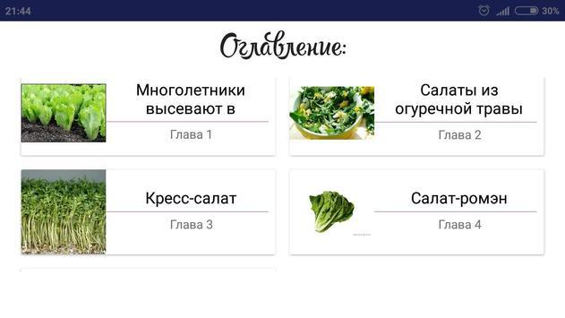 Салат в огороде screenshot 3