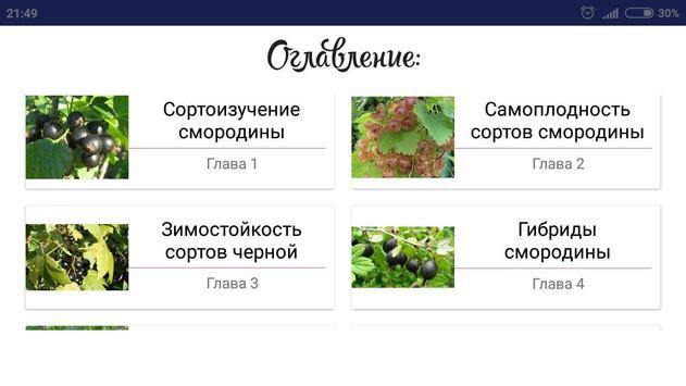 Смородина screenshot 3