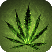 Weed Wallpapers HD APK