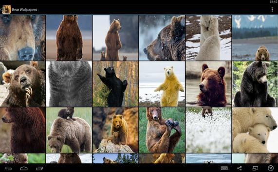 Bear Wallpapers screenshot 5
