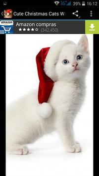 Cute Christmas Cats Wallpapers apk screenshot