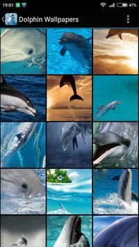 Dolphin Wallpapers poster