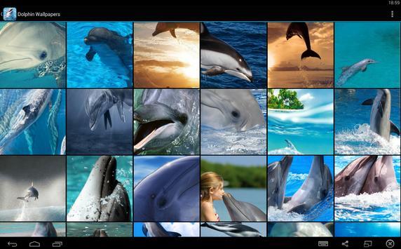 Dolphin Wallpapers screenshot 4