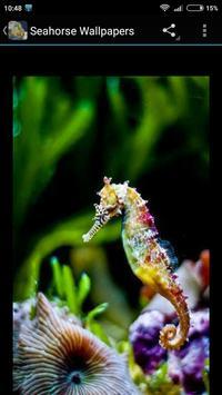 Seahorse Wallpapers screenshot 1