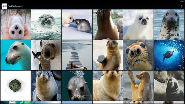 Seal Wallpapers screenshot 4