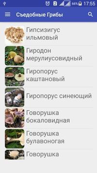 Собирать Грибы Съедобные screenshot 8