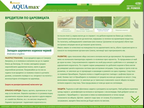 Optimum® AQUAmax® каталог poster