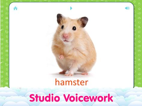 Animal sounds and flashcards for Kids screenshot 7
