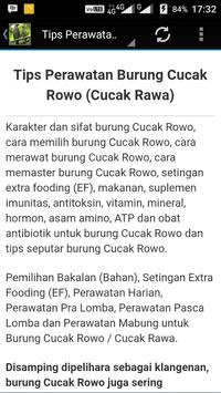 kicau Cucak Rowo Dowo Buntute apk screenshot