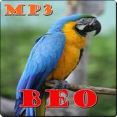 Master Beo Mp3 icon