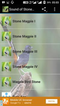 Sound of Stone Magpie poster