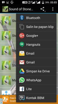 Sound of Stone Magpie apk screenshot