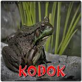Ringtones Kodok icon
