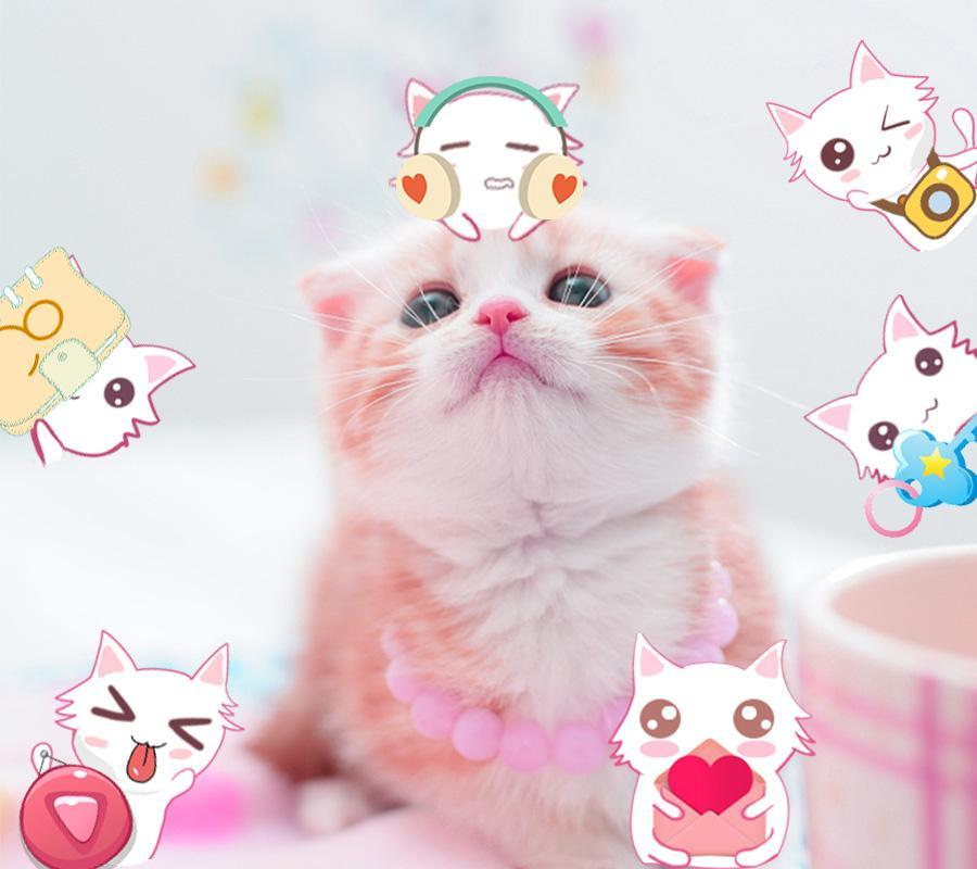 Pink Kucing Imut Kitty Tema Pink Cat Cute For Android Apk