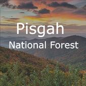 Explore Pisgah App icon
