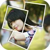 PIP Cam icon