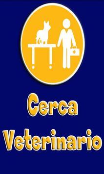 Cerca Veterinario poster