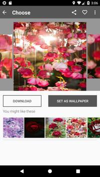Rose Wallpaper screenshot 1