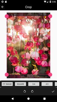 Rose Wallpaper screenshot 2