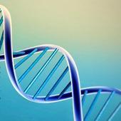 Inteligencia artificial - Algoritmos Geneticos icon