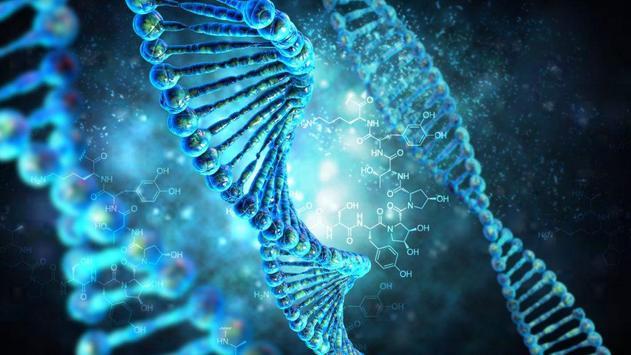 Inteligencia artificial - Algoritmos Geneticos screenshot 1