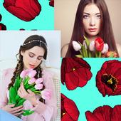 Tulip Photo Collage icon