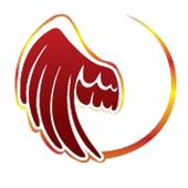 VyM Distribuidora icon