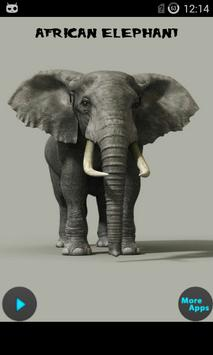 Endangered Species Sound poster