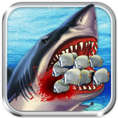 Play Shark Killer icon