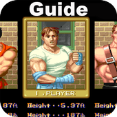 Guide for Final Fight icon