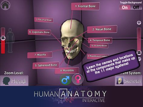 Playar Human Anatomy Chart Apk Download Free Education App For