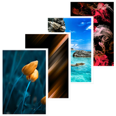 Wallpaper HD icon