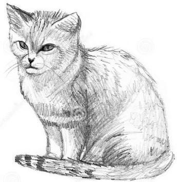 Lukisan kucing pensil