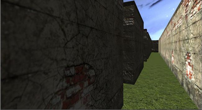Maze 3d: Find The Path screenshot 2