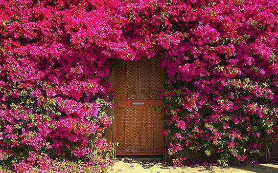 Garden Doors Design Ideas screenshot 4
