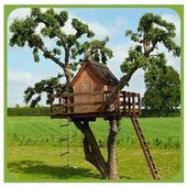 DIY Treehouse Design Ideas icon