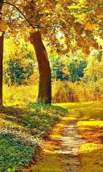 Nature Landscapes Puzzle Free Game apk screenshot