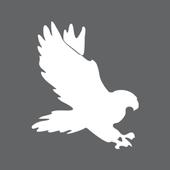 UAF Falcons icon