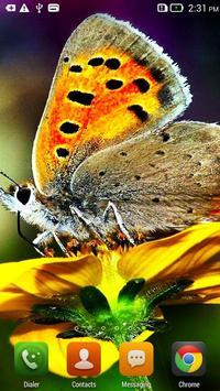 Butterfly HD apk screenshot