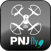 PNJ fly icon