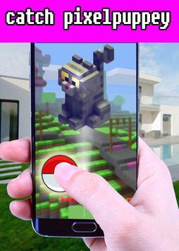 Catch Pixelpuppy Craft Pet Go! poster