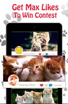 Cute Cat Pictures Contest & Photo editor screenshot 9