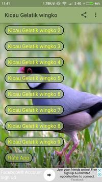 Kicau Gelatik Wingko poster