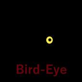 Bird-Eye (by Pojava.com) icon